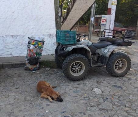 La Cruz street scene