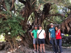 Road trip to Misión de San Javier with S/V Jean Butler, November 2018