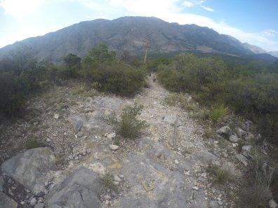 Las Nieves Mountain Race FKT 6