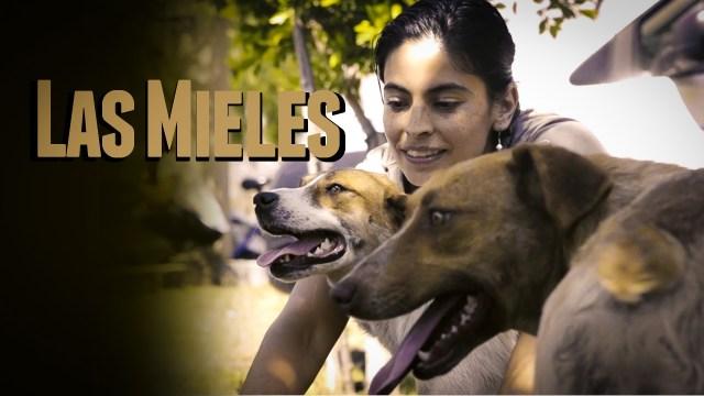 Las Mieles - Una Historia en El Arenal
