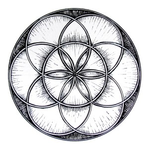 flower of life with seven rings