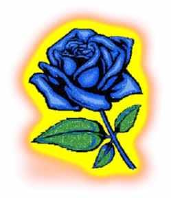 Finding El Dorado Blue Rose
