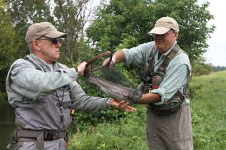 Richard Holloway and vet David Wiggins get a handle on a large one.