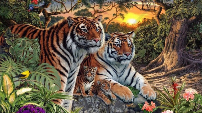 Hány tigris van összesen a képen? Mindenki mást mond