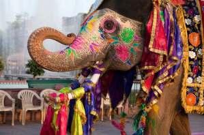 india-tours-jaipur