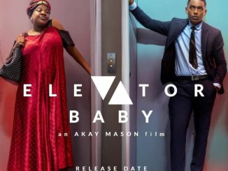 Download movie Elevator Baby Movie Download