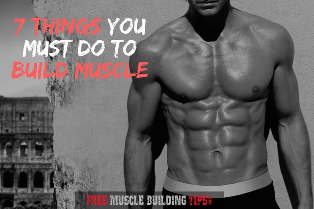 Seven Things You Must Do To Build Muscle