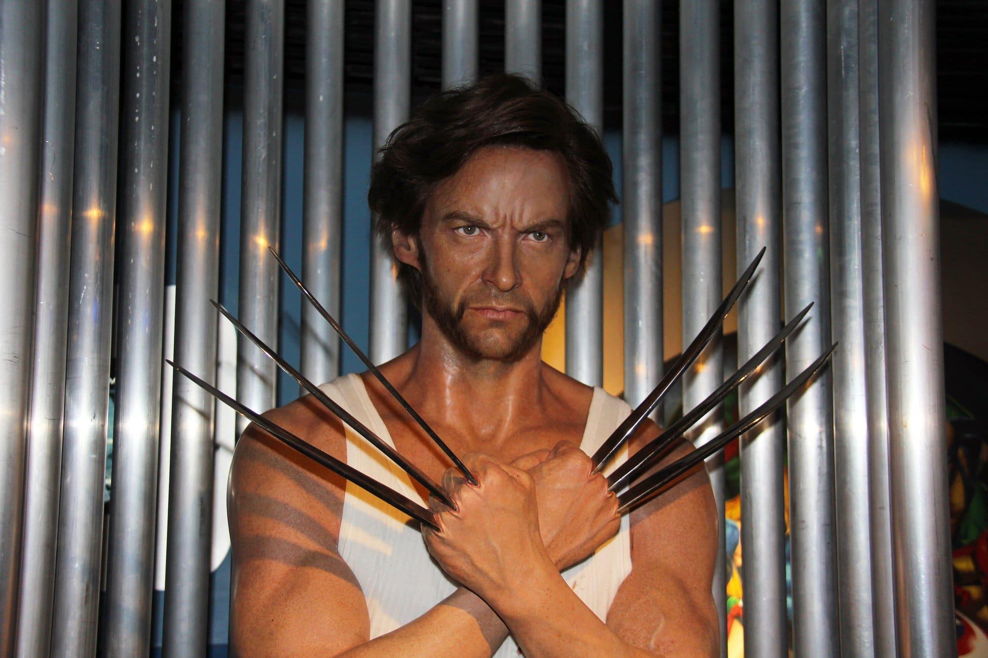 """Hugh Jackman """"The Wolverine"""" Diet Plan"""