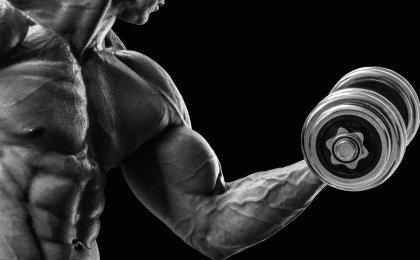 bigger biceps workout