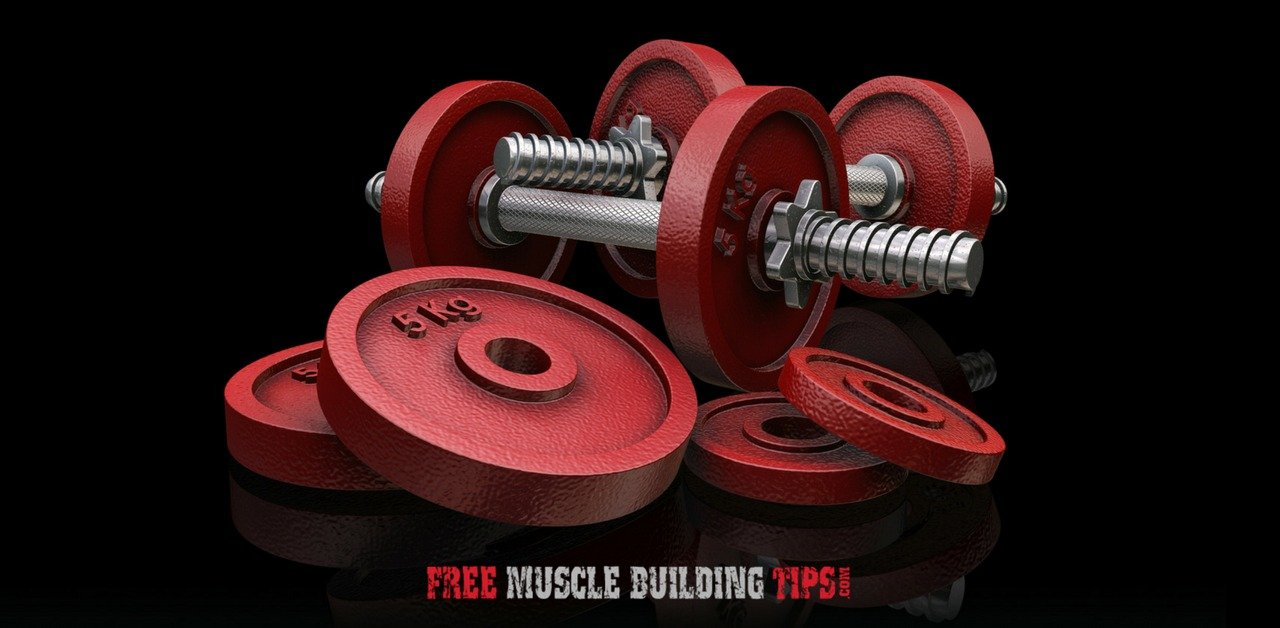 Free Weights vs Machines: Which is Better for Building Muscle?