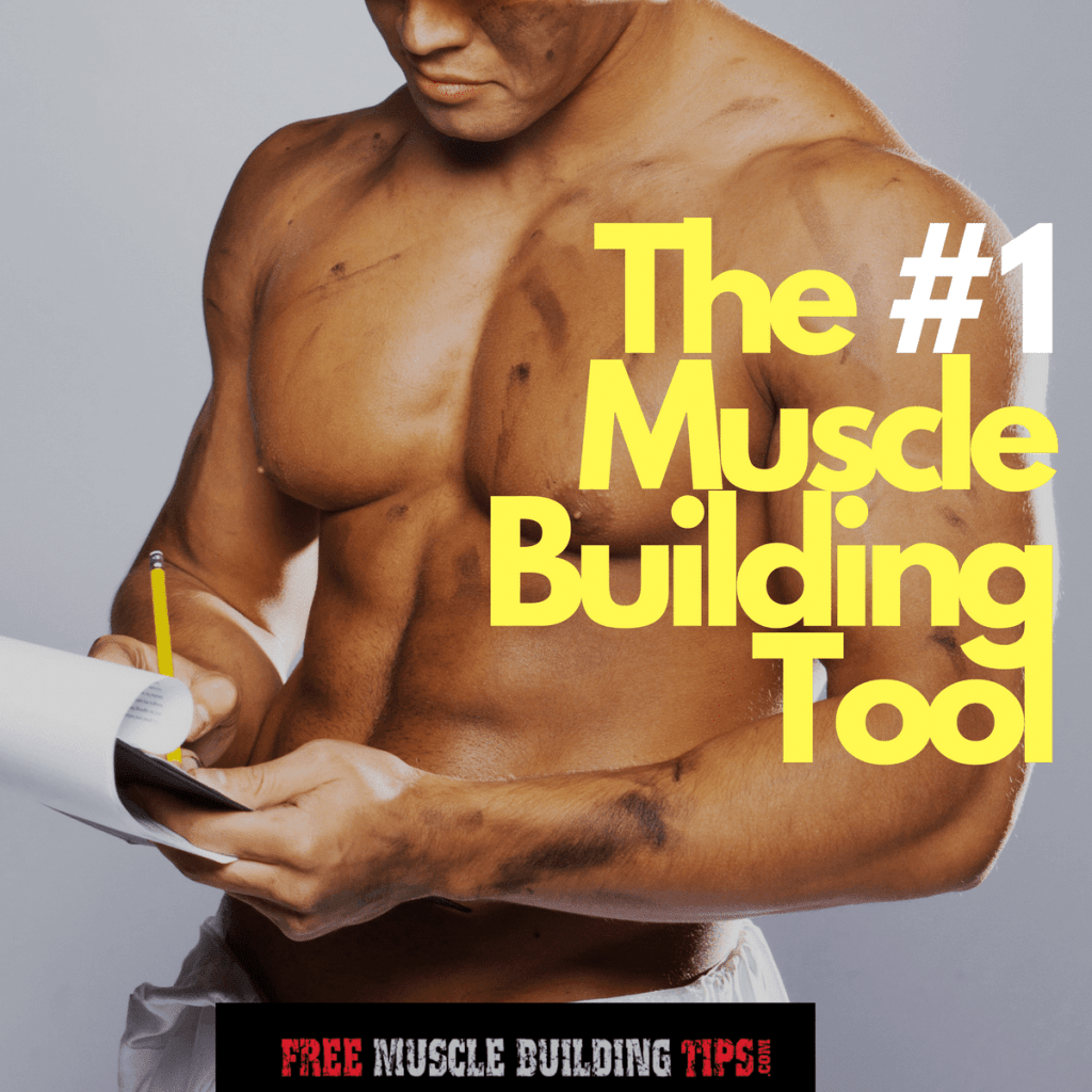 best muscle building tool