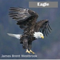 James Brent Westbrook Eagle (2017)