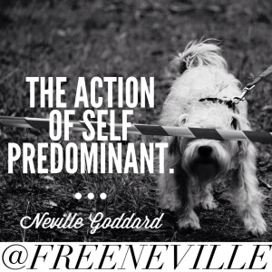 feel_it_real_method_neville_goddard