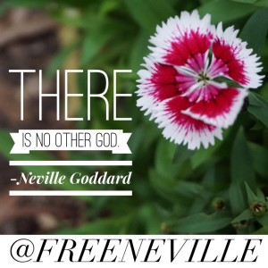 neville_goddard_quote_no_other_god