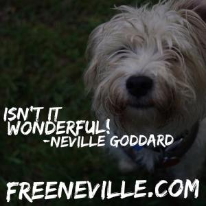 isn't it wonderful neville goddard