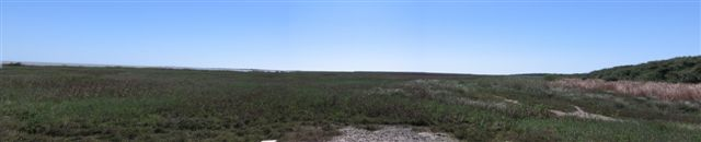 Aransas National Wildlife Reserve