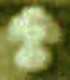 Enlargement of Cap Badge Image 1