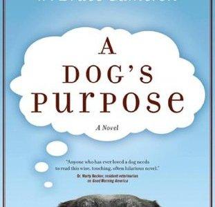 a dog's purpose movie,a dog's purpose cast,a dog's purpose imdb,a dog's purpose full movie online,a dog's purpose review,a dog's purpose pdf,a dog's purpose showtimes,a dog's purpose quotes,a dog's purpose book review,a dog's purpose movie review,a dog's purpose abuse,a dog's purpose book,a dog's purpose abuse video,a dog's purpose animal abuse,a dog's purpose author,a dog's purpose amazon,a dog's purpose audiobook,a dog's purpose actors,a dog's purpose a novel for humans,a dog's purpose amc,a dog's purpose audible,a dog's purpose,a dog's purpose novel,a dog's purpose box office,a dog's purpose book series,a dog's purpose bailey,a dog's purpose book target,a dog's purpose book amazon,a dog's purpose book walmart,a dog's purpose book online free,a dog's purpose book cover,a dog's purpose controversy,a dog's purpose commercial,a dog's purpose corgi,a dog's purpose characters,a dog's purpose common sense media,a dog's purpose commercial song,a dog's purpose chapter 1,a dog's purpose chapter summary,a dog's purpose cast ethan,a dog's purpose dog,a dog's purpose dvd,a dog's purpose dog names,a dog's purpose date,a dog's purpose dog cast,a dog's purpose discussion questions,a dog's purpose dennis quaid,a dog's purpose dog breeds,a dog's purpose director,a dog's purpose dog voice,a dog's purpose ethan,a dog's purpose ebook,a dog's purpose epub,a dog's purpose ending,a dog's purpose ellie,a dog's purpose ebook download,a dog's purpose español,a dog's purpose extended trailer,a dog's purpose ellie's story,a dog's purpose epub free download,a dog's purpose full movie free,a dog's purpose film,a dog's purpose full trailer,a dog's purpose full cast,a dog's purpose fandango,a dog's purpose full book,a dog's purpose facebook,a dog's purpose free pdf,a dog's purpose film review,a dog's purpose german shepherd,a dog's purpose genre,a dog's purpose google drive,a dog's purpose google drive mp4,a dog's purpose giveaway,a dog's purpose google books,a dog's purpose gsc,a dog's purpose 