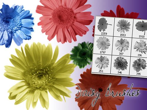 Daisy Photoshop Brushes