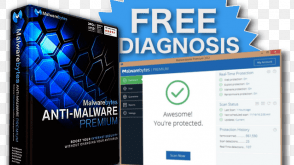 Malwarebytes for Windows - Antivirus Replacement for PCs