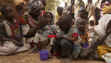 Photo of بسبب سوء التغذية.. موريتانيا تخسر المليارات سنويا