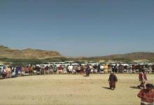 Photo of دور محوري للقبائل الجنوبية في مقاومة غزو مليشيات الاخوان