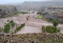 Photo of ورد للتو.. فلكي يمني يحذر من 70 سيل نتيجة الأمطار الغزيرة على مختلف المحافظات ابتداءً من هذا التاريخ…!!