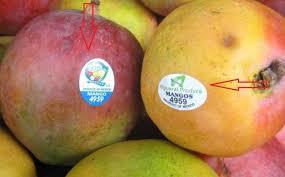 صورة هذه هي سر الملصقات التي توضع على الفواكه والخضار