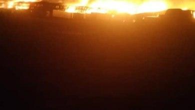 صورة سقوط قتلى وجرحى من عناصر القاعدة بمحافظة مارب