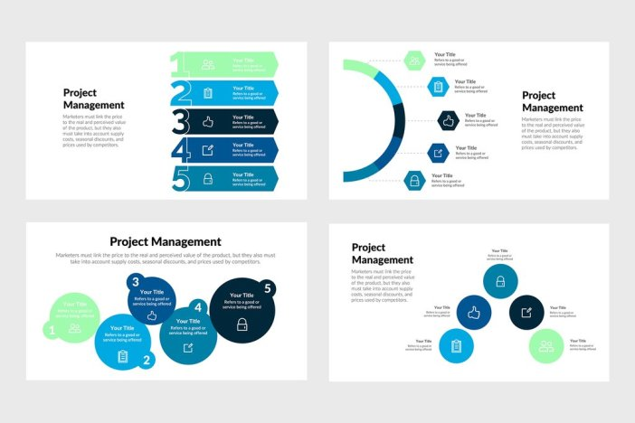 Project Management Infographics for PowerPoint