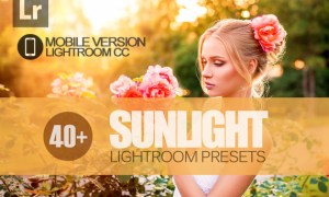 40+ Sunlight Lightroom Mobile bundle