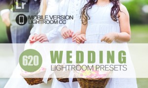 620+ Wedding Lightroom Mobile bundle