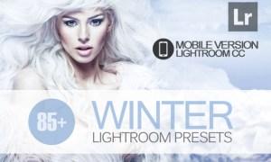 85+ Winter Lightroom Mobile bundle