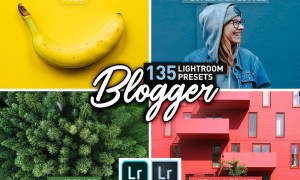 Blogger Bundle 135 Lightroom Presets