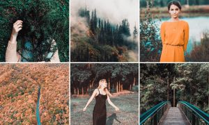 Fall Presets 2018 – Lightroom Preset 2994739