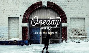 Oneday Winter Lightroom presets 2148764