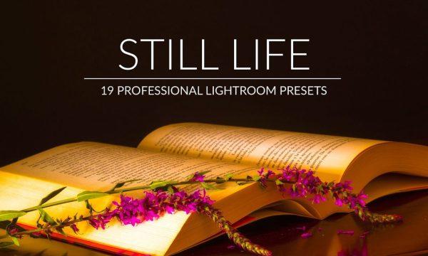 Still Life Lr Presets 3140199