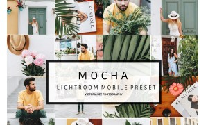 Mobile Lightroom Preset MOCHA 2737771
