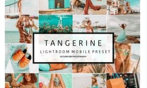 5 Mobile Lightroom presets TANGERINE 3491216