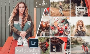 Cristie Lightroom Presets 3429254