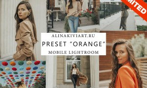 Alina Kiviart - Orange Desktop & Mobile Presets