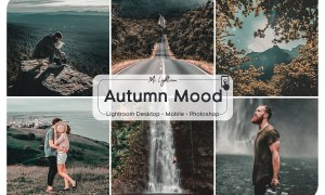 Autumn Mood Lightroom Presets 3121430