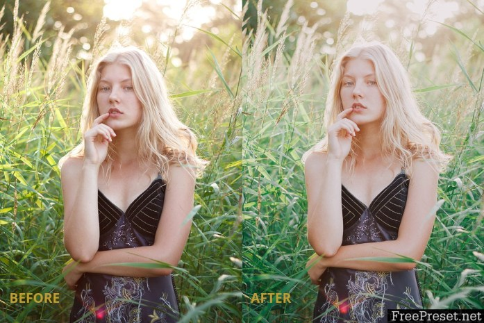 Film tone Lightroom preset 2980455