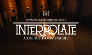 Interpolate Lightroom Presets