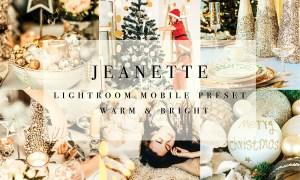 Mobile Lightroom Preset 3181346