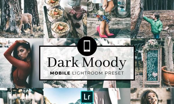 Mobile Lightroom Preset Dark Moody 3320008
