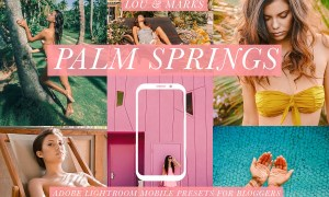 Palm Springs Mobile Blogger Presets 2961883