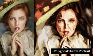 Polygonal Sketch Portrait 3383452
