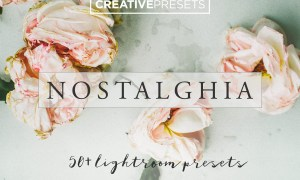 50+ Vintage Lightroom Presets 2554644