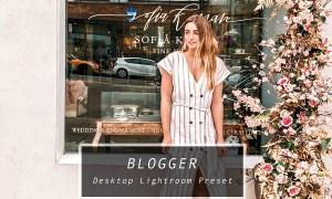 Desktop Lightroom Preset BLOGGER 3628791
